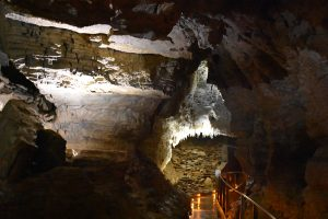 Ruakuri Cave Walk
