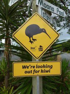 Bay of Plenty Kiwi